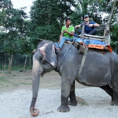 "Chitwan - Elephant Ride • <a style=""font-size:0.8em;"" href=""http://www.flickr.com/photos/127467392@N07/16002709001/"" target=""_blank"">View on Flickr</a>"