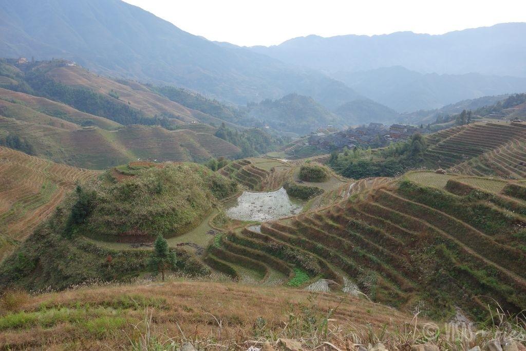Dazai, rizière de Longji, dos du dragon, Chine terrasses 3