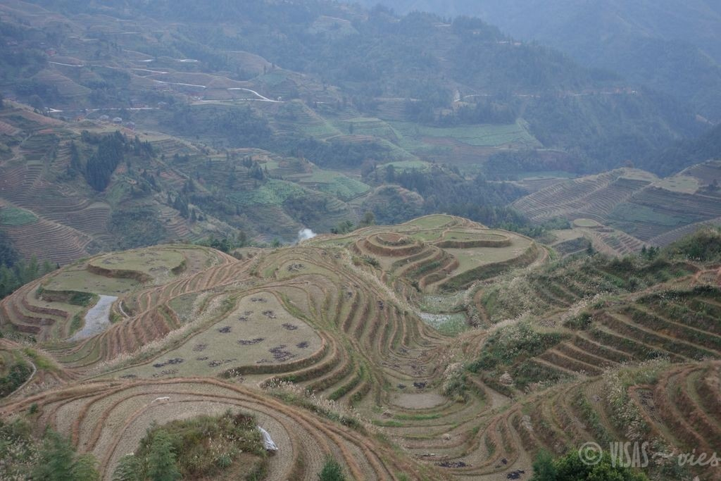 Dazai, rizière de Longji, dos du dragon, Chine terrasses 5