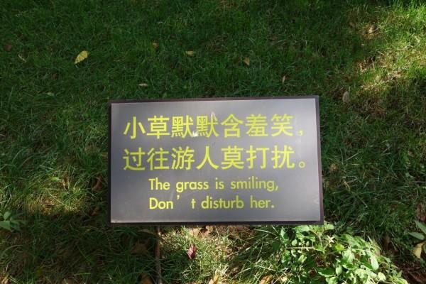 Shilin, forêt de pierres, panneau, traduction