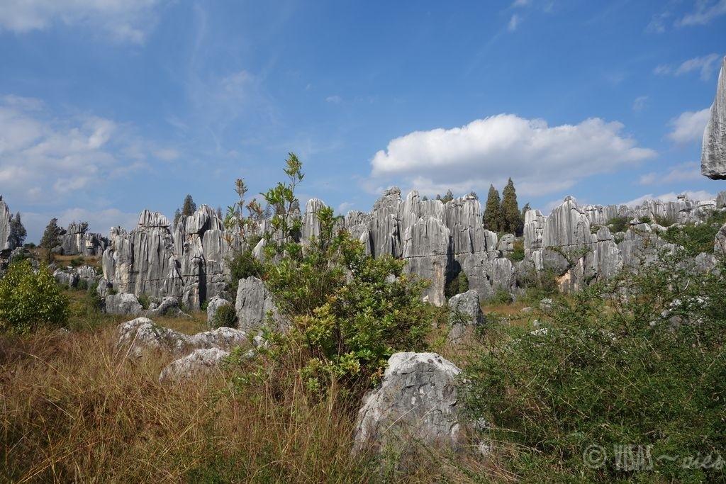 Shilin, forêt de pierres, magnifique