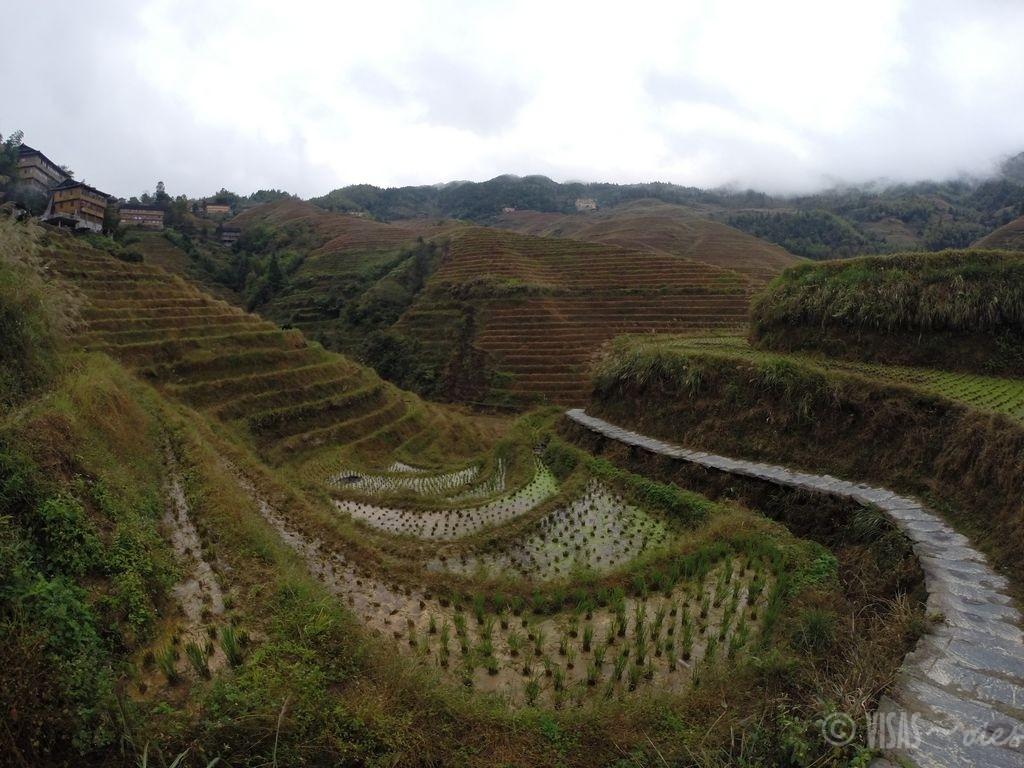 Dazai, rizière de Longji, dos du dragon, Chine terrasses 2