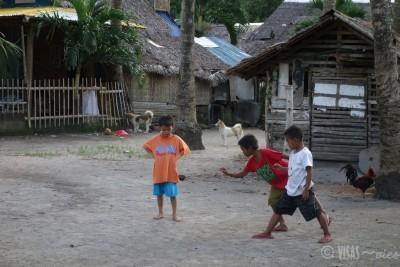 Apo Island (4)