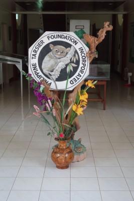 Bohol (8)